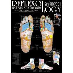 מפת רפלקסולוגיה של כף הרגל