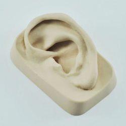דגם אוזן ימין גומי