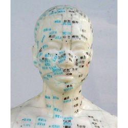 דגם ראש אדם  20 ס'מ