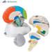 דגם מוח נוירו-אנטומי 8 חלקים  3B Scientific
