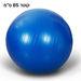 כדור פיזיו גדול